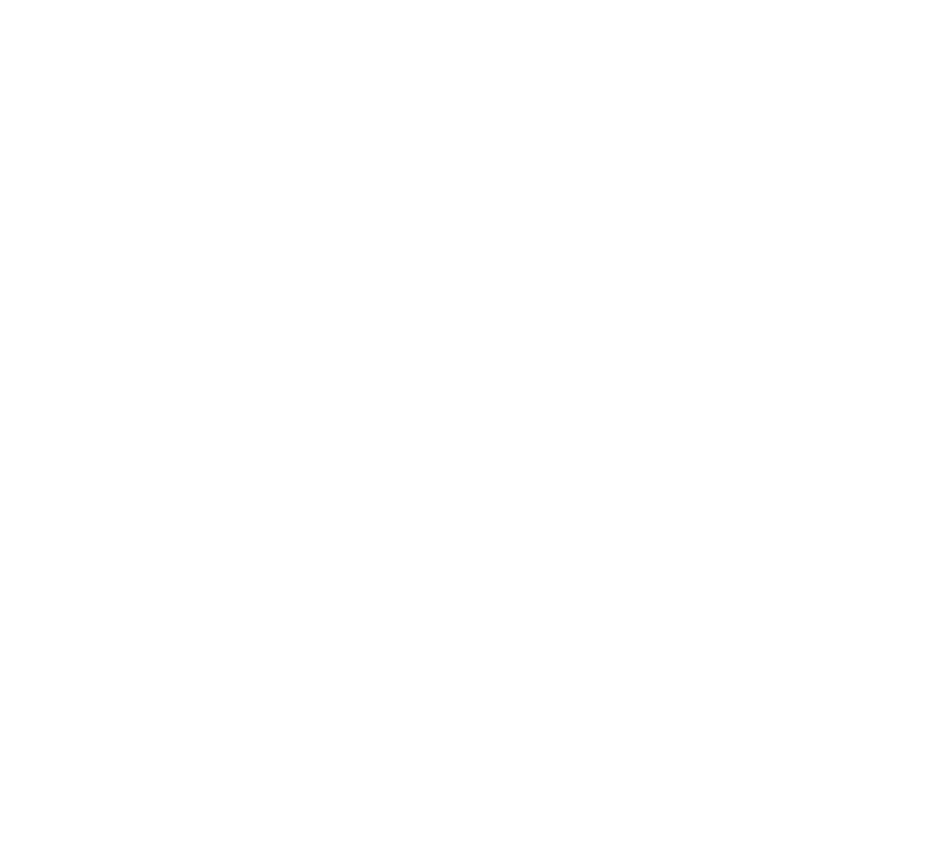 Whey DNA - BSN