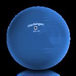 Gym Ball (Bola Suiça) - 55cm - Harbinger