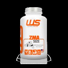 ZMA Size - World Size