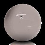 Gym Ball (Bola Suiça) - 75cm - Harbinger